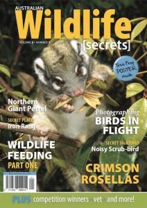 AWS Vol 2 No 1 : Possum Cover